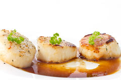 Fried scallops. With soy sauce on white plate stock image