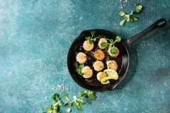 Fried scallops with butter sauce. Fried scallops with butter lemon spicy sauce in cast-iron pan served with green salad over turquoise texture background. Top stock photography