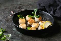 Fried scallops with butter sauce. Fried scallops with butter lemon spicy sauce in cast-iron pan served with green salad and textile napkin over old dark metal Stock Image