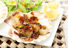 Fried scallops in the shell Royalty Free Stock Photo