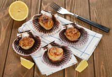 Fried scallops Stock Photos
