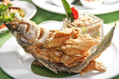 Fried sea bass Stock Images