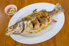 Fried sea bass with fish sauce Royalty Free Stock Photos