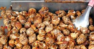 Fried Sea Snails met Spaanse peper Stock Foto