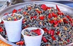 Fried Sea Snails met Spaanse peper Royalty-vrije Stock Afbeeldingen