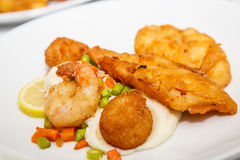 Fried Seafood Plate royalty free stock photos