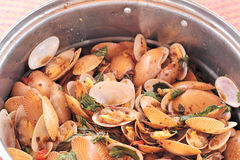 Fried shell in curry sauce - Surf clam Stock Images