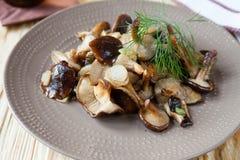 Fried shiitake mushrooms Royalty Free Stock Photo