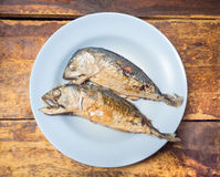 Fried short-bodied mackerel on blue plate with wooden background Royalty Free Stock Image