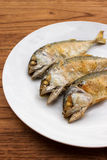 Fried short-bodied mackerel on white plate with wooden backgroun Stock Images