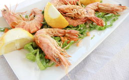 Fried shrimp with salad Royalty Free Stock Photography