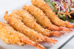 Fried shrimp with salad Stock Image