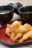 Fried shrimp tempura. Stock Images
