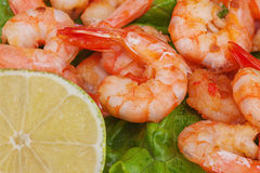 Fried shrimps with lemon and sauce. Royalty Free Stock Photo