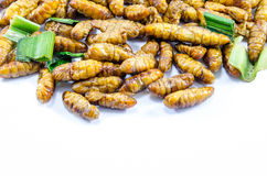 Fried Silk Worms. With green pandan leaves Royalty Free Stock Photography