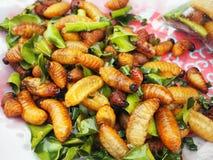 Fried Silkworms com folhas do cal foto de stock