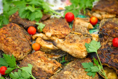 Fried slices of chicken, tomatoes and parsley leaves. Stock Image