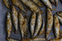 Fried Small Fish Royalty Free Stock Photography