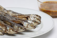 Fried small fish. Small fish fried and spicy sauce Stock Image