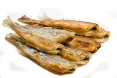 Fried small smelt fish. On white background Royalty Free Stock Photo
