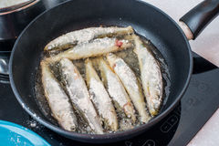 Fried small smelt tasty fish on a barbecue  hotplate Stock Photo