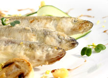 Fried smelt Royalty Free Stock Photo