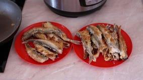 Fried Smelt Fish en las placas almacen de metraje de vídeo