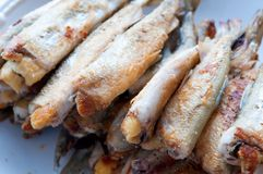 Fried smelt fish Royalty Free Stock Images