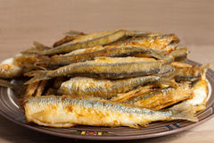 Fried smelt Royalty Free Stock Photography