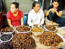 Fried Snacks. Woman at the Central Market in Phnom Penh selling crickets, cockroaches and other deep fried insects Royalty Free Stock Photography