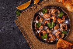 Fried snails with lemon, baguette and parsley. Stock Photos