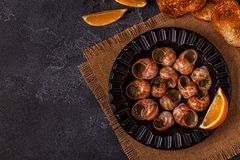 Fried snails with lemon, baguette and parsley. Royalty Free Stock Images