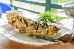 Fried snakehead fish Royalty Free Stock Images