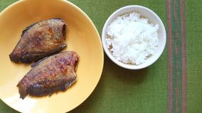 Fried snakeskin gourami and cooked rice Royalty Free Stock Image