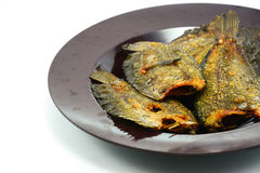 Fried Snakeskin gourami Royalty Free Stock Image