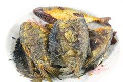 Fried Snakeskin gourami on white Stock Photography