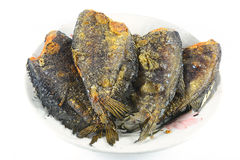 Fried Snakeskin gourami on white Royalty Free Stock Photography