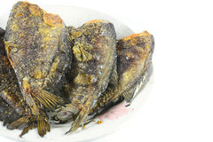Fried Snakeskin gourami on white Stock Photo