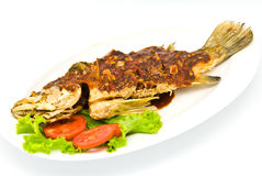 Fried snapper with chili sauce Royalty Free Stock Photos