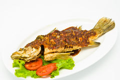 Fried snapper with chili sauce Stock Photos
