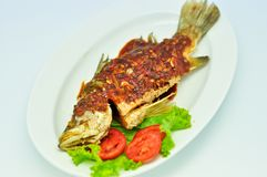 Fried snapper with chili sauce on the plate Royalty Free Stock Image