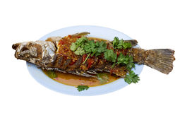 Fried snapper with chili sauce on the plate with white backgroun Stock Images