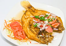 Fried Snapper Fish Stock Image