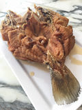 Fried snapper fish with fish sauce. Stock Photo