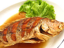 Fried snapper with fish sauce on the dish Stock Photography