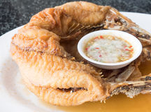 Fried snapper fish with the spicy sauce. Stock Photos
