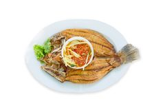 Scorched Snapper topped on white plate, die cut in white background. Fried snapper fish ,top view in white isolated stock photos