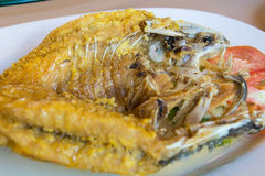 Fried snapper Royalty Free Stock Photography