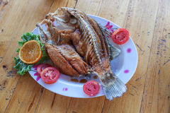 Fried snapper Stock Image