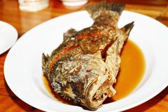 Fried snapper. Topped with fish sauce Stock Photos